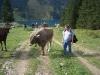 bild 005 - 10 Jahre Laserzentrum Schorcht - Ausflug in die Tiroler Alpen
