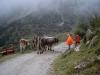 bild016 - 10 Jahre Laserzentrum Schorcht - Ausflug in die Tiroler Alpen