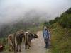 bild017 - 10 Jahre Laserzentrum Schorcht - Ausflug in die Tiroler Alpen